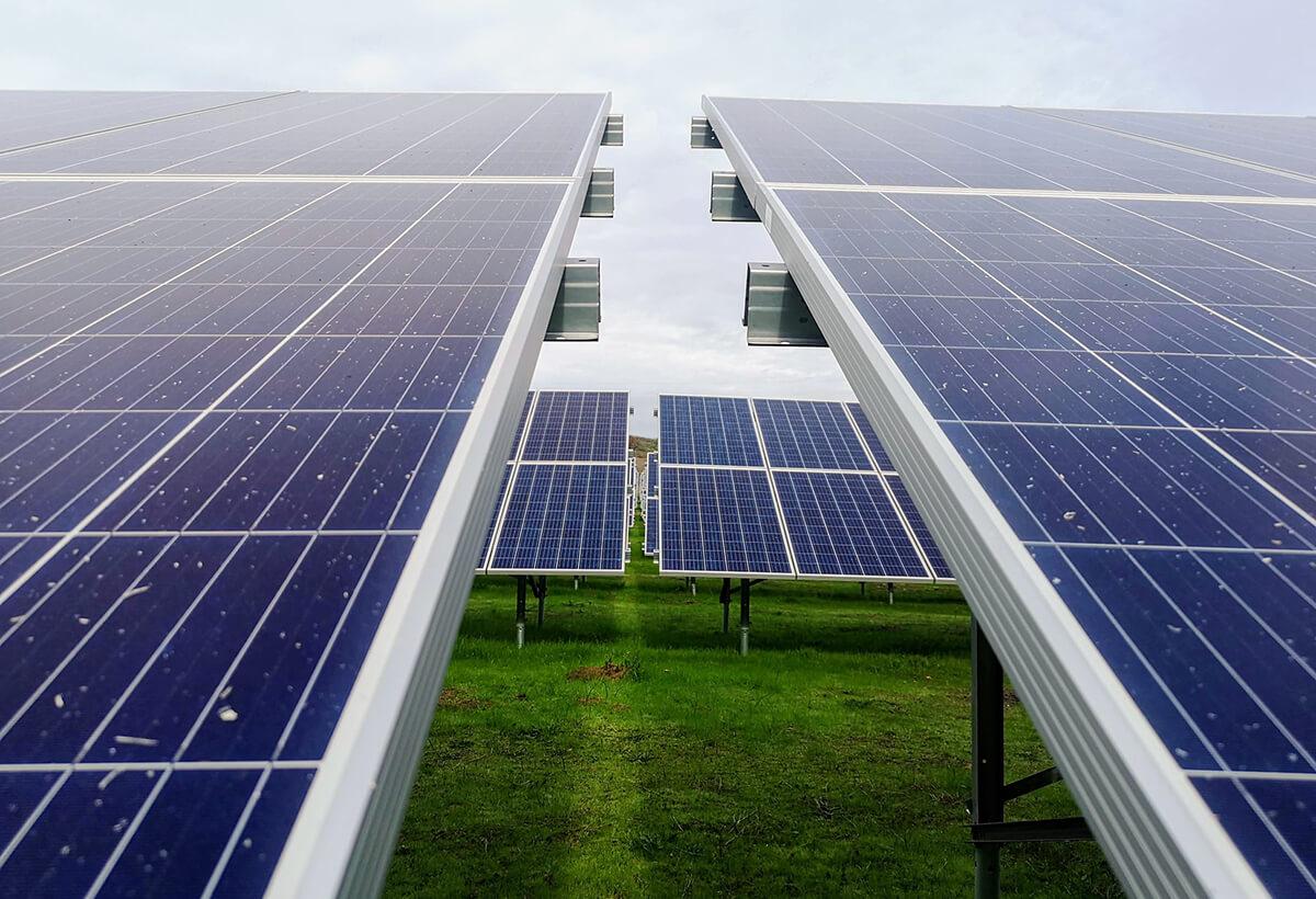 panneau solaire ou panneau photovoltaïque